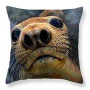 Seal Pup Throw Pillow