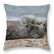 Seal Pup On Beach Throw Pillow