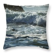 Seal Surfing Waves Throw Pillow