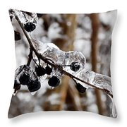 Sealed In Ice Throw Pillow