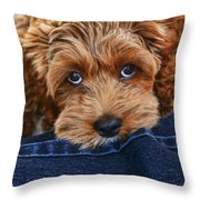 Seamus Throw Pillow