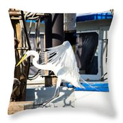 Searching For Free Fish Throw Pillow