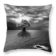 Searching For Land Throw Pillow