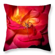 Searching For Miss Muffet Throw Pillow