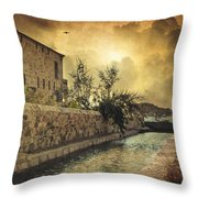 Searching The Past Throw Pillow by Taylan Apukovska