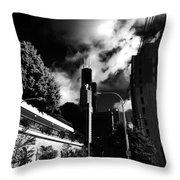 Sears  Throw Pillow