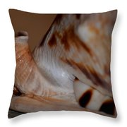 Seashell Abstract 1 Throw Pillow