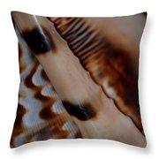 Seashell Abstract 2 Throw Pillow