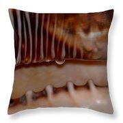 Seashell Abstract 3 Throw Pillow