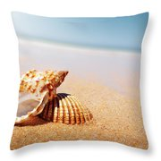 Seashell And Conch Throw Pillow