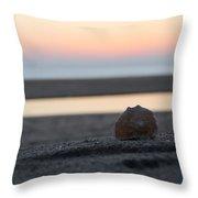 Seashell Before Sunrise Throw Pillow
