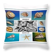 Seashell Collection 3 - Collage Throw Pillow