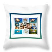 Seashell Collection 4 - Collage Throw Pillow