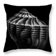 Seashell On Black Throw Pillow