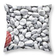 Seashell On White Pebbles Throw Pillow