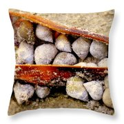 Seashell Reunion Throw Pillow