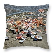 Seashells Throw Pillow
