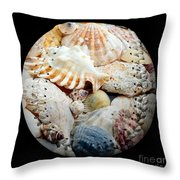 Seashells Baseball Square Throw Pillow