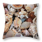 Seashells - Vertical Throw Pillow