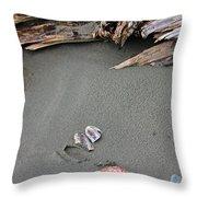 Seashells On The Seashore II Throw Pillow