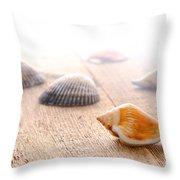 Seashells On Wood Dock Throw Pillow