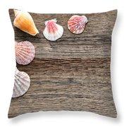 Seashells On Wood Throw Pillow
