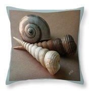 Seashells Spectacular No 29  Throw Pillow