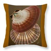 Seashells Spectacular No 53 Throw Pillow