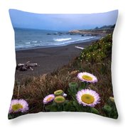 Seaside Daisies On Moonstone Beach Throw Pillow by Kathy Yates
