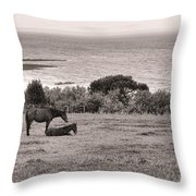 Seaside Horses Throw Pillow by Olivier Le Queinec