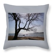 Seaside Tree In Connecticut Long Island Sound Throw Pillow