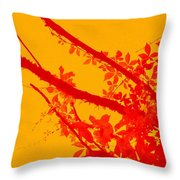 Season Of Colours Throw Pillow