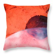 Seasonal Arc Throw Pillow