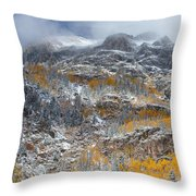 Seasonal Chaos Throw Pillow
