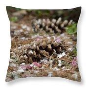 Seasonal Mix 3684 Throw Pillow