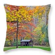 Seasonal Sensation Throw Pillow