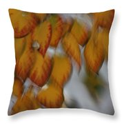 Seasonal Shiver Throw Pillow
