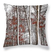 Seasons Converge Throw Pillow