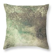 Seaspray Throw Pillow