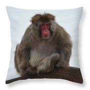 Seated Macaque Snow Monkey Throw Pillow