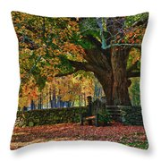 Seated Under The Fall Colors Throw Pillow