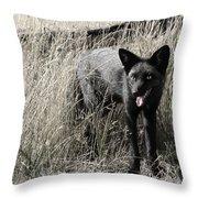 Seattle Silver Fox Throw Pillow