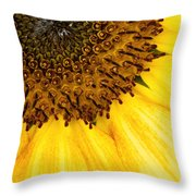 Seattle Sunflower Close-up Throw Pillow