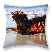 Seaweed 2 Throw Pillow