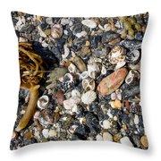 Seaweed And Shells Throw Pillow