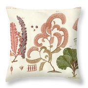 Seaweed Different Kinds Throw Pillow