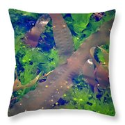 Seaweed Variety Throw Pillow