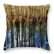 Sebring Cypress Swamp Reflection Throw Pillow