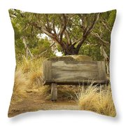 Secluded Bench Throw Pillow