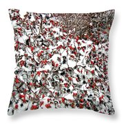 Secluded Winter Haven Throw Pillow
